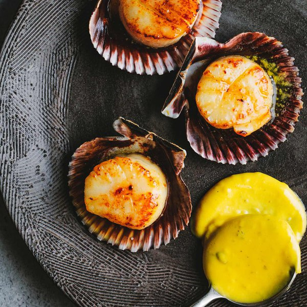 Dirty-grilled scallops in the shell with beef dripping bearnaise
